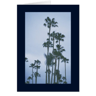 Palms of Summer- Song of Sol. 8:7 Greeting Card