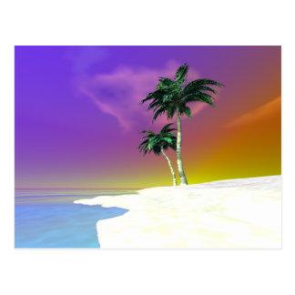 Palms on White Postcard