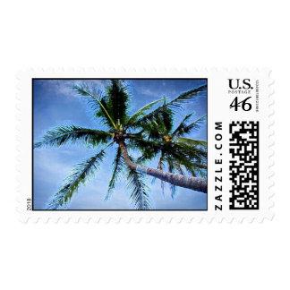 Palms Postage