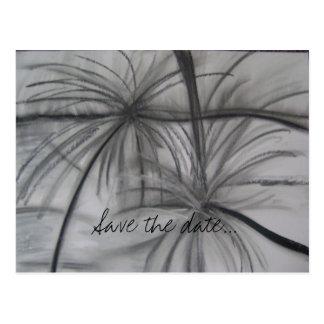 Palms Postcard