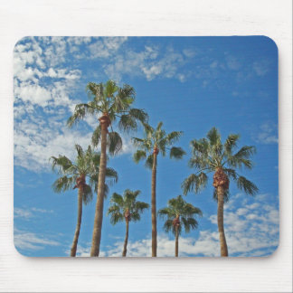 Palms trees with blue sky mouse pad