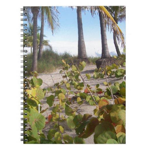 Palmtree Libros De Apuntes