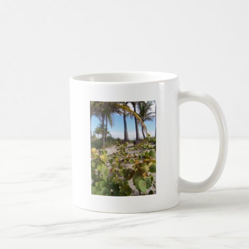 Palmtree Tazas De Café