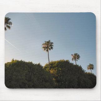 palmtrees mousepad