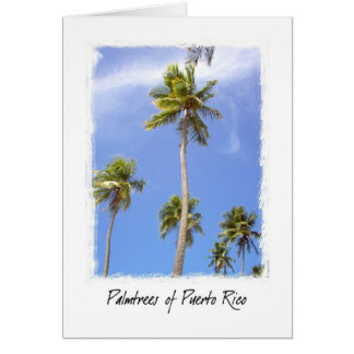 Palmtrees of Puerto Rico Cards