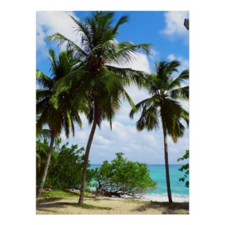 Palmtrees on Tropical Seascape Poster