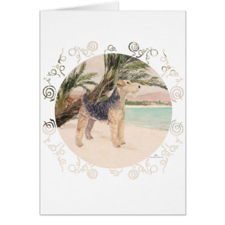 Palmy Beach Card