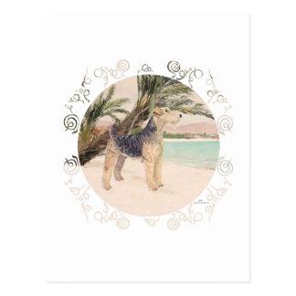 Palmy Beach Postcard