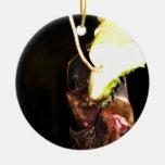 Palo de fruta 3 adorno
