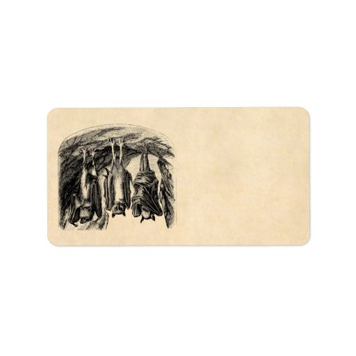 Palo del Fox de vuelo de los 1800s del palo del Etiquetas De Dirección