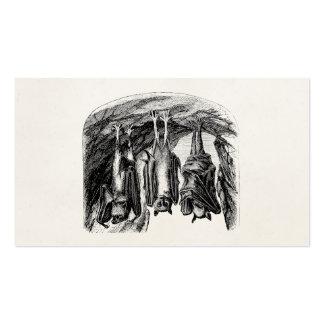 Palo del Fox de vuelo de los 1800s del palo del vi Plantilla De Tarjeta De Visita