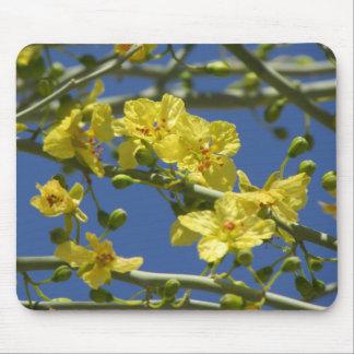 Palo Verde Blooms Mouse Pad