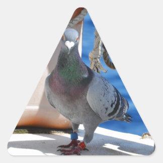 Paloma autoguiada hacia el blanco pegatina triangular
