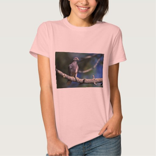 paloma Banda-atada Tshirts