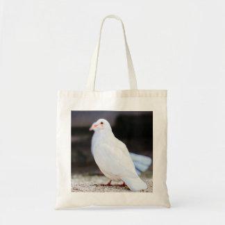 Paloma blanca, fotografía del pájaro bolsas