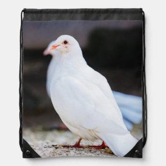 Paloma blanca, fotografía del pájaro mochilas