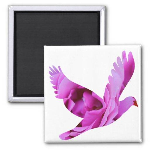 Paloma color de rosa púrpura del ala imanes de nevera