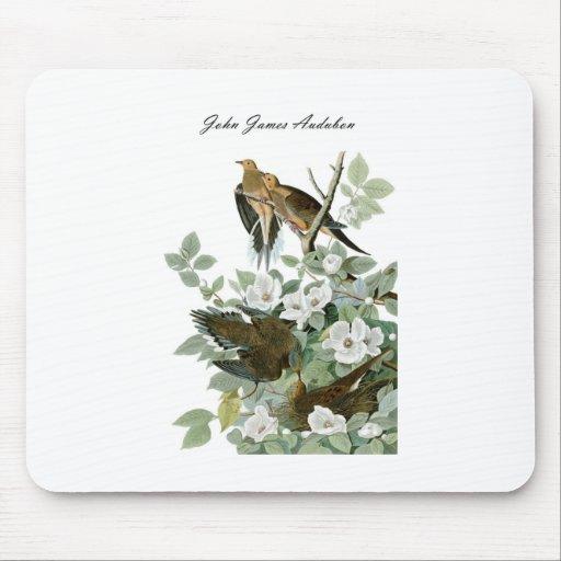 Paloma de luto 1 de la paloma de John James Audubo Alfombrilla De Ratones