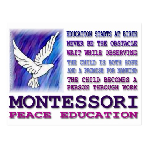 Paloma de Montessori Tarjetas Postales