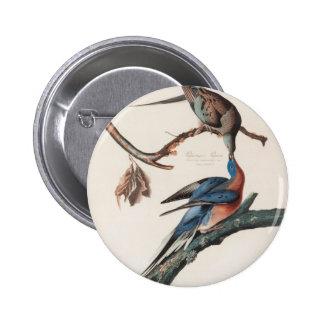 Paloma de pasajero (1838) Juan J. Audubon Pin Redondo De 2 Pulgadas