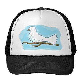 Paloma del blanco gorras