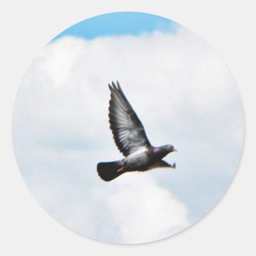 Paloma del vuelo en el cielo etiqueta redonda