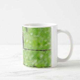 Paloma en un alambre taza