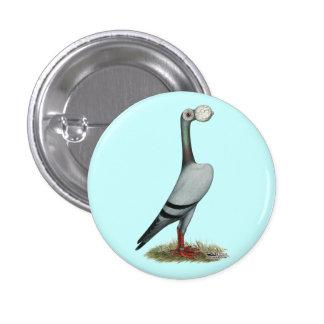 Paloma mensajera 2012 pins
