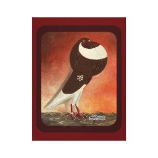 Paloma roja del cosechador de Norwich Lienzo Envuelto Para Galerias