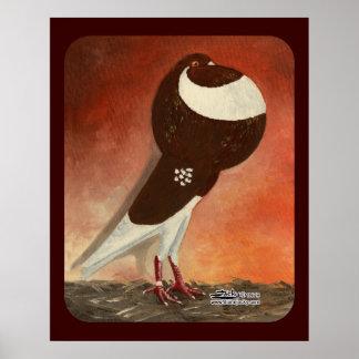 Paloma roja del cosechador de Norwich Impresiones