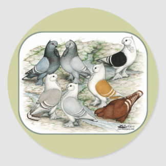 Palomas barradas volante clásico etiquetas redondas