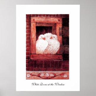 PALOMAS BLANCAS EN LA VENTANA, rosa rojo Póster