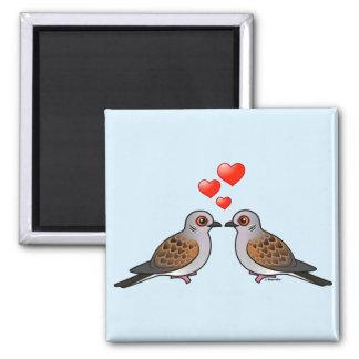 Palomas de la tortuga en amor imán para frigorifico