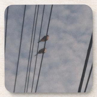 Palomas de luto en el alambre posavasos