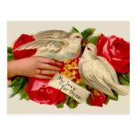 Palomas del amor del Victorian de los pájaros del Postal