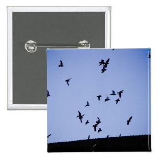 Palomas del vuelo pin cuadrada 5 cm