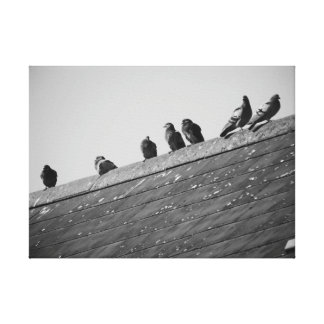 Palomas en un tejado impresión en lienzo