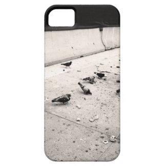 Palomas iPhone 5 Case-Mate Cárcasa