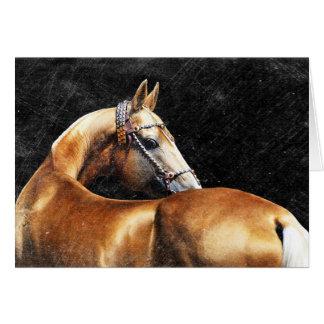 Palomino Akhal-teke stallion Card