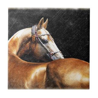 Palomino Akhal-teke stallion Tile