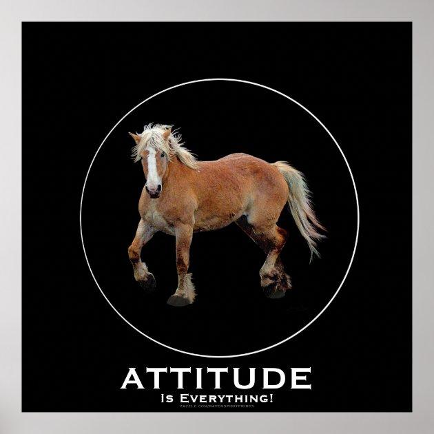 Palomino Belgian Draft Horse Attitude Poster Zazzle Com