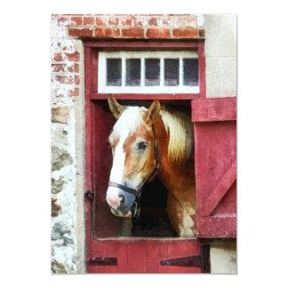 Palomino by Barn Door Card