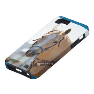 Palomino iPhone 5 Cover