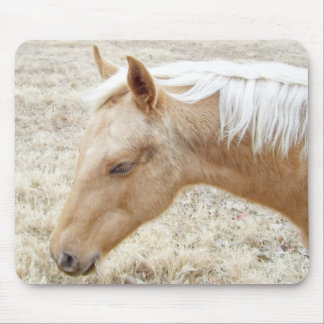 Palomino Colt Pony Horse Mouse Pad