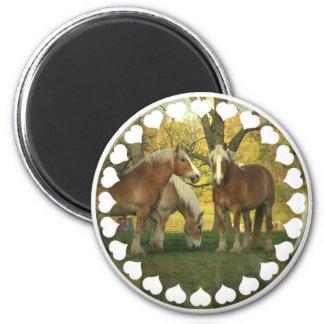 Palomino Draft Horses Magnet Fridge Magnet