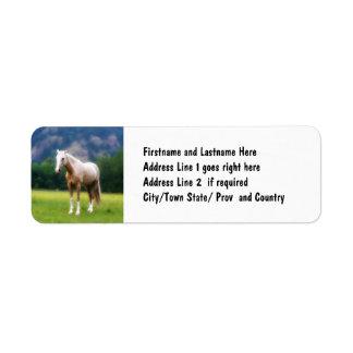 Palomino Dream Horse Label