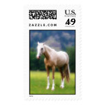 Palomino Dream Horse Postage Stamp