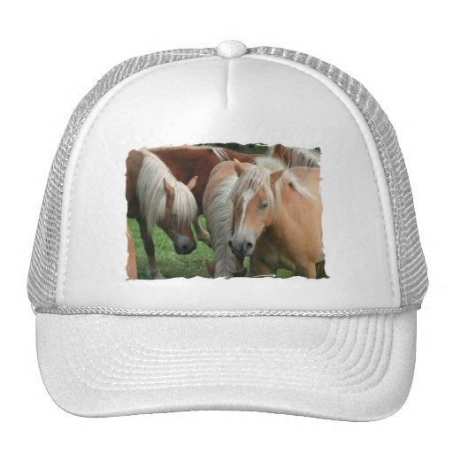 Palomino Herd Baseball Cap Hats