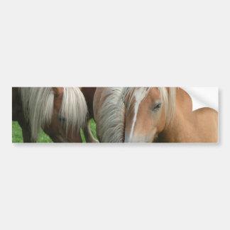 Palomino Herd Bumper Sticker