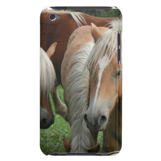 Palomino Herd iTouch Case Barely There iPod Covers